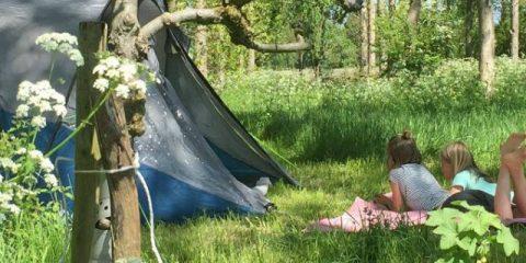 5 einzigartige Campingplätze in den Niederlanden