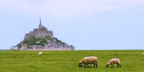 Eine Perle Nordfrankreichs: Le Mont-Saint-Michel